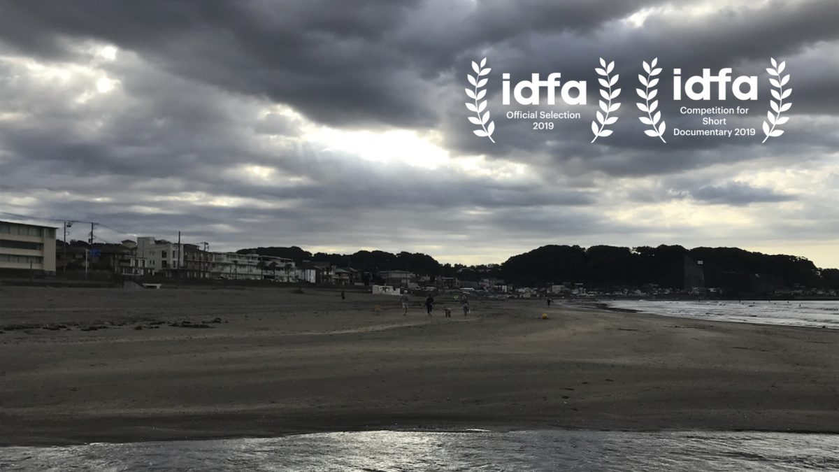 """Transition"" has been selected for the IDFA Competition for Short Documentary"